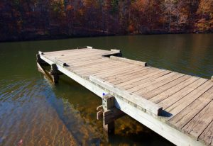 Choosing the Right Dock Pilings: Why Most People Prefer Treated Wood Pilings