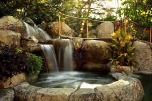 Considering Outdoor Water Features For Your Home? Check This Overview!