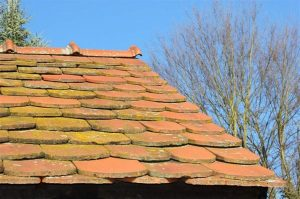 A Guide on How to Protect Your Roof